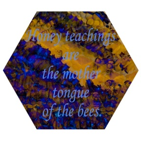 Detail 01, Honey Teachings, 2009-10, archival digital print, 11.5 inches in diameter
